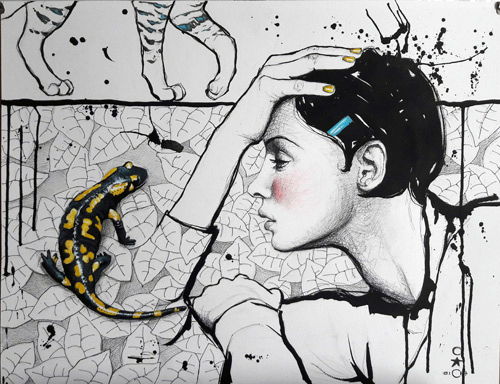 Salamandre-